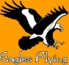 Eagles Flying - Image