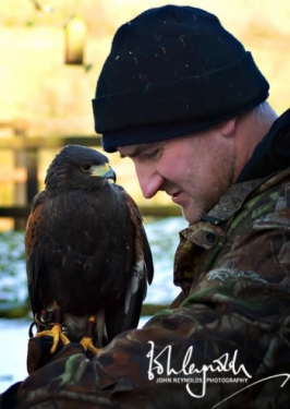 Jimmy the falconer with Harry the Haris Hawk