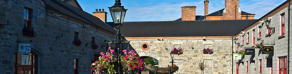 MyCarrick.ie - To Do in Carrick on Shannon - Market yard Carrick on Shannon