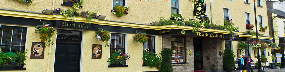 MyCarrick.ie - To Stay in Carrick on Shannon - Bush hotel Carrick on Shannon
